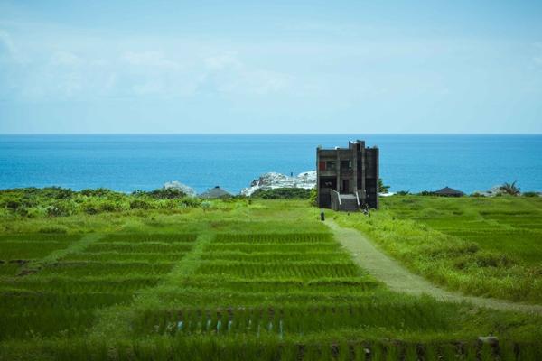 【生活構成要件】七月:熱天和熱情,夏日台灣爽快小旅行──海上、島上、山上與池上