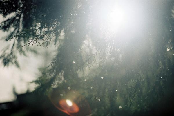 關於愛/情|液態陽光