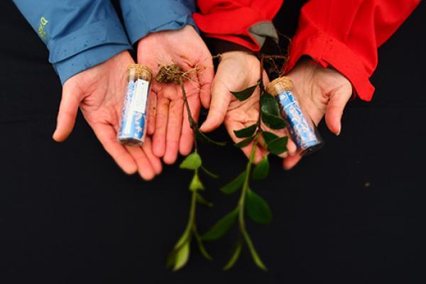 種下種籽,油茶樹的約定──茶籽堂尋油之旅探訪